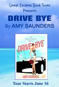 DRIVE BYE SMALL BANNER