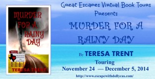 murder for a rainy day  large banner313