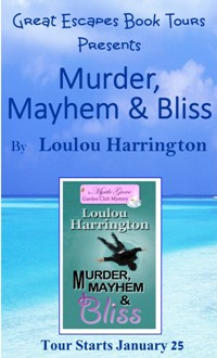 murder mayhem and bliss SMALL BANNER