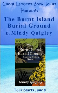 burnt island SMALL BANNER