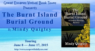 the burndt island  large banner330