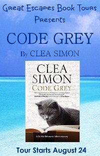 CODE GREY SMALL BANNER