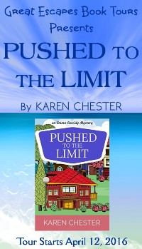 PUSHED TO THE LIMIT small banner