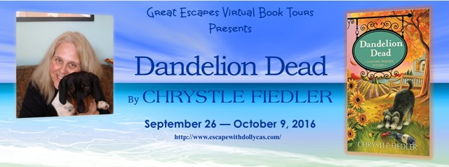 DANDELION DEAD BOOK TOUR large banner640